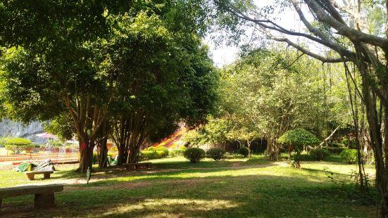 海南八一石花水洞地質公園