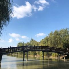 Jiangxiangcun User Photo