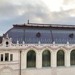 Buda Castle User Photo