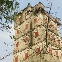 Watchtower Group of Zili Village User Photo