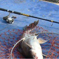 Jomtien Fishing Park User Photo
