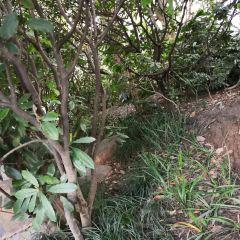 管社山荘のユーザー投稿写真