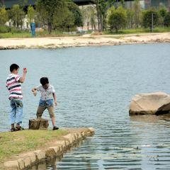 매계호 공원 여행 사진