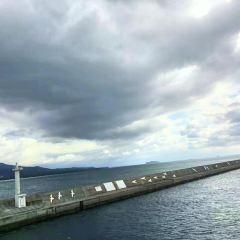 海洋鹿兒島港用戶圖片