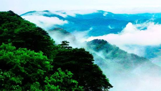 Jiguan Mountain Forest Park