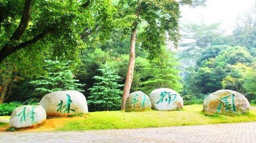 Guilin Zoo
