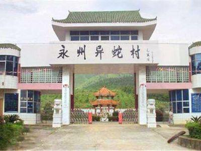 永州異蛇村