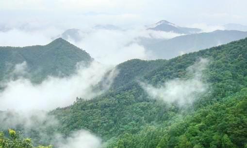 Zaomu Mountain