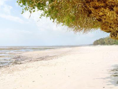 Bamburi海灘
