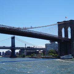 布魯克林大橋用戶圖片