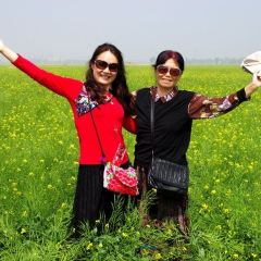 Gangshan Huahai User Photo