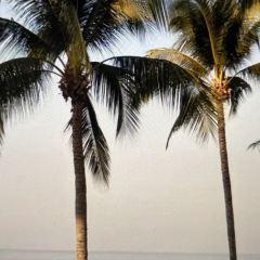 Jomtien Beach User Photo