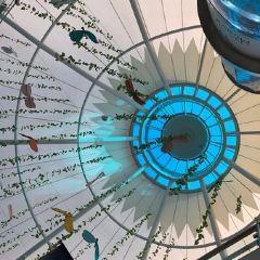 Mushrif Mall User Photo