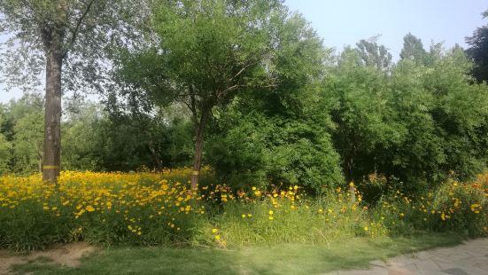 Qilin Park