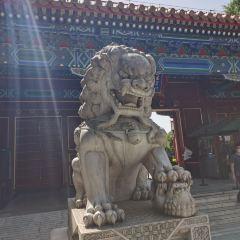 징산 공원(경산 공원) 여행 사진