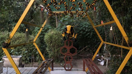 Big Bee Farm