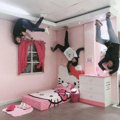 Upside Down Museum User Photo
