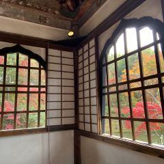 高台寺用戶圖片