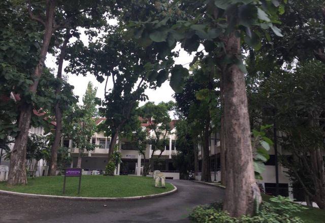 치앙마이 대학교