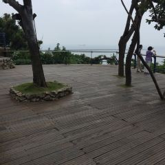 The British Consulate at Takao User Photo
