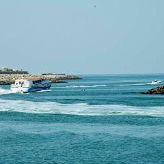 Bait Al Wakeel User Photo