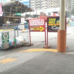 Metrowalk User Photo
