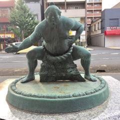 Sumo Museum User Photo