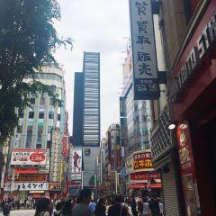 신주쿠 여행 사진