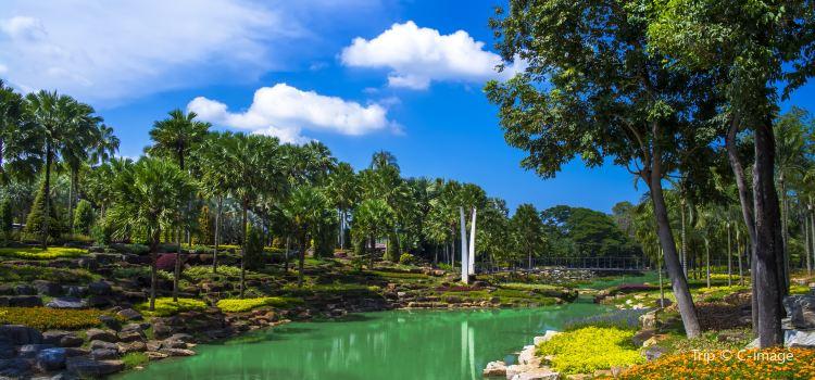 Nong Nooch Tropical Botanical Garden2