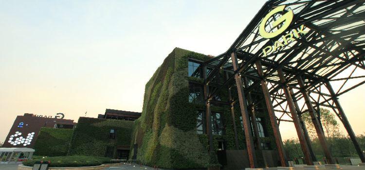 上海國際旅遊度假區生態園