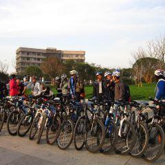 武漢大學用戶圖片