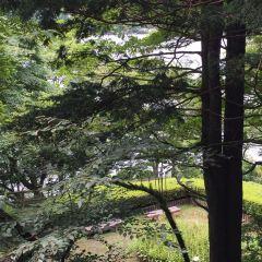 恩賜箱根公園 用戶圖片