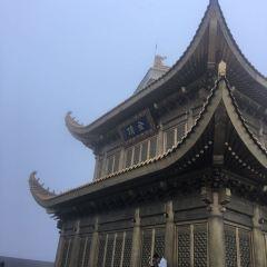 Golden Statue of Puxian on Emei Mountain User Photo