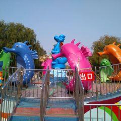 Children's Park of Harbin User Photo