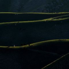 喀拉峻草原用戶圖片