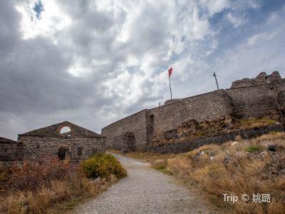 Kars Castle