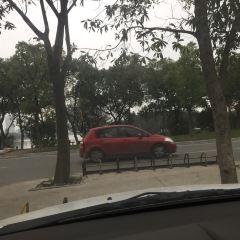 相思林公園用戶圖片
