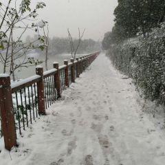 蜀峰灣體育公園用戶圖片