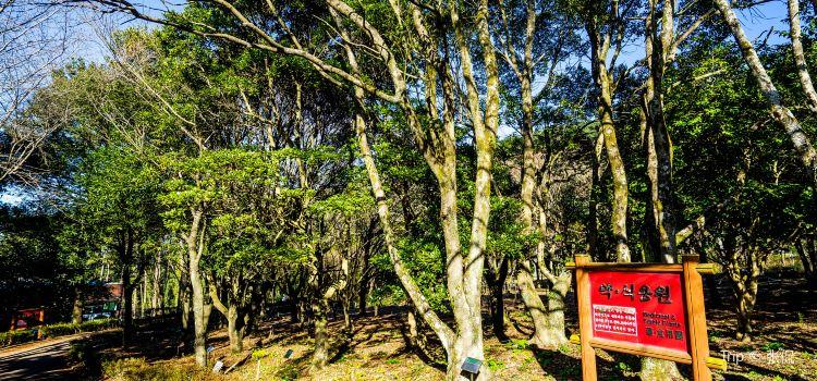 한라수목원1