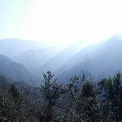 Tianzidi User Photo