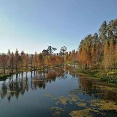 Nandianchi National Wetland Park User Photo