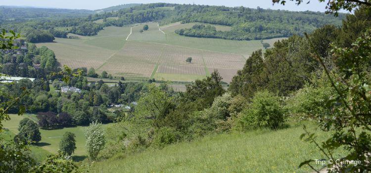 Box Hill2