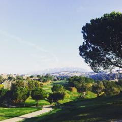 Dino Park Mini Golf User Photo