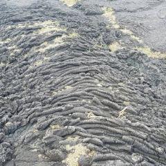 Punaluu Black Sand Beach User Photo