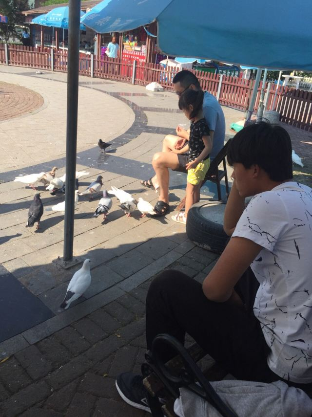 Pigeon Nest Park