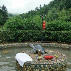 Yudailong Hot Spring User Photo
