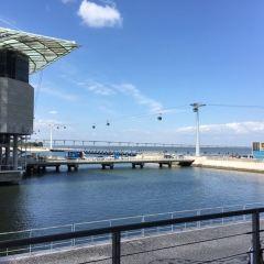 Lisbon Oceanarium User Photo