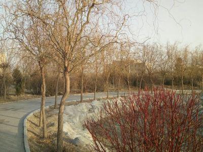 大淩河漂流