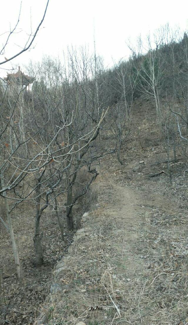 Shilin Gorge