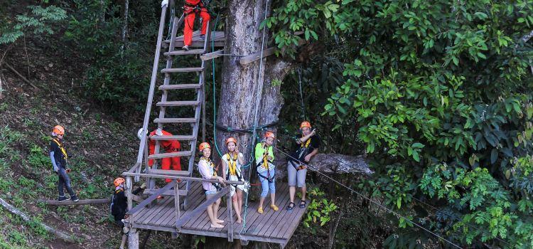 Sky Line Adventure Jungle Leap2